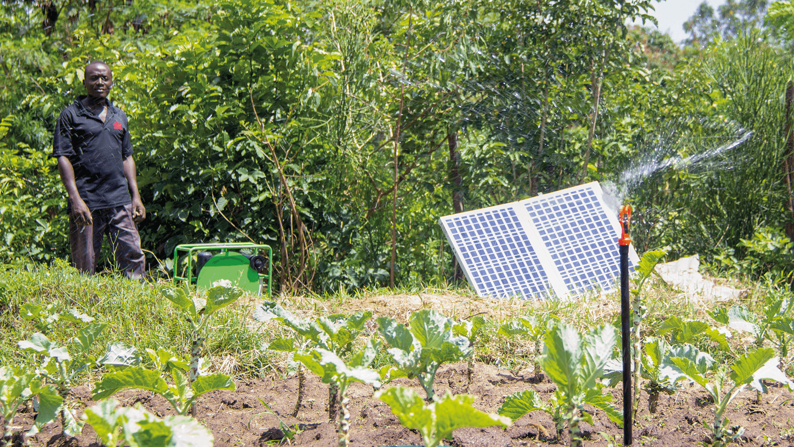 Farmer switched of SF2 solar pump to power spinklers